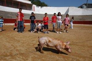 Abortada la celebración del cochinillo engrasado de Sariñena (Huesca)