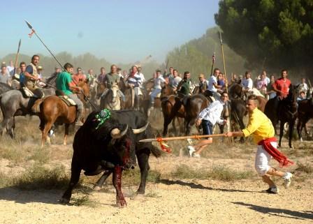 Crónica e imágenes de la terrible muerte de Afligido el Toro de la Vega 2011