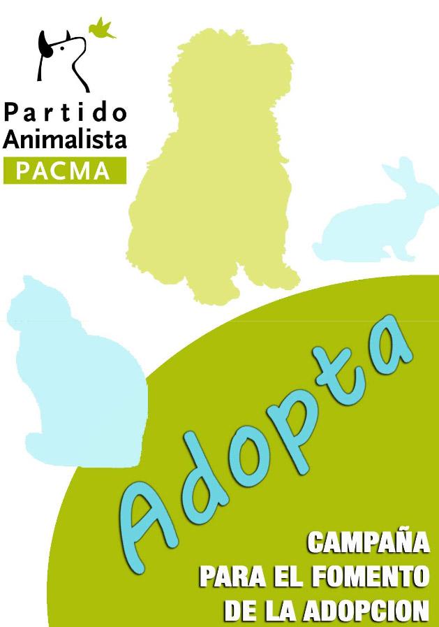 Jerez: Campaña para el fomento de las adopciones en Jerez de la Frontera