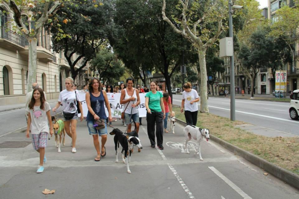 Marcha contra la caza y el uso de perros