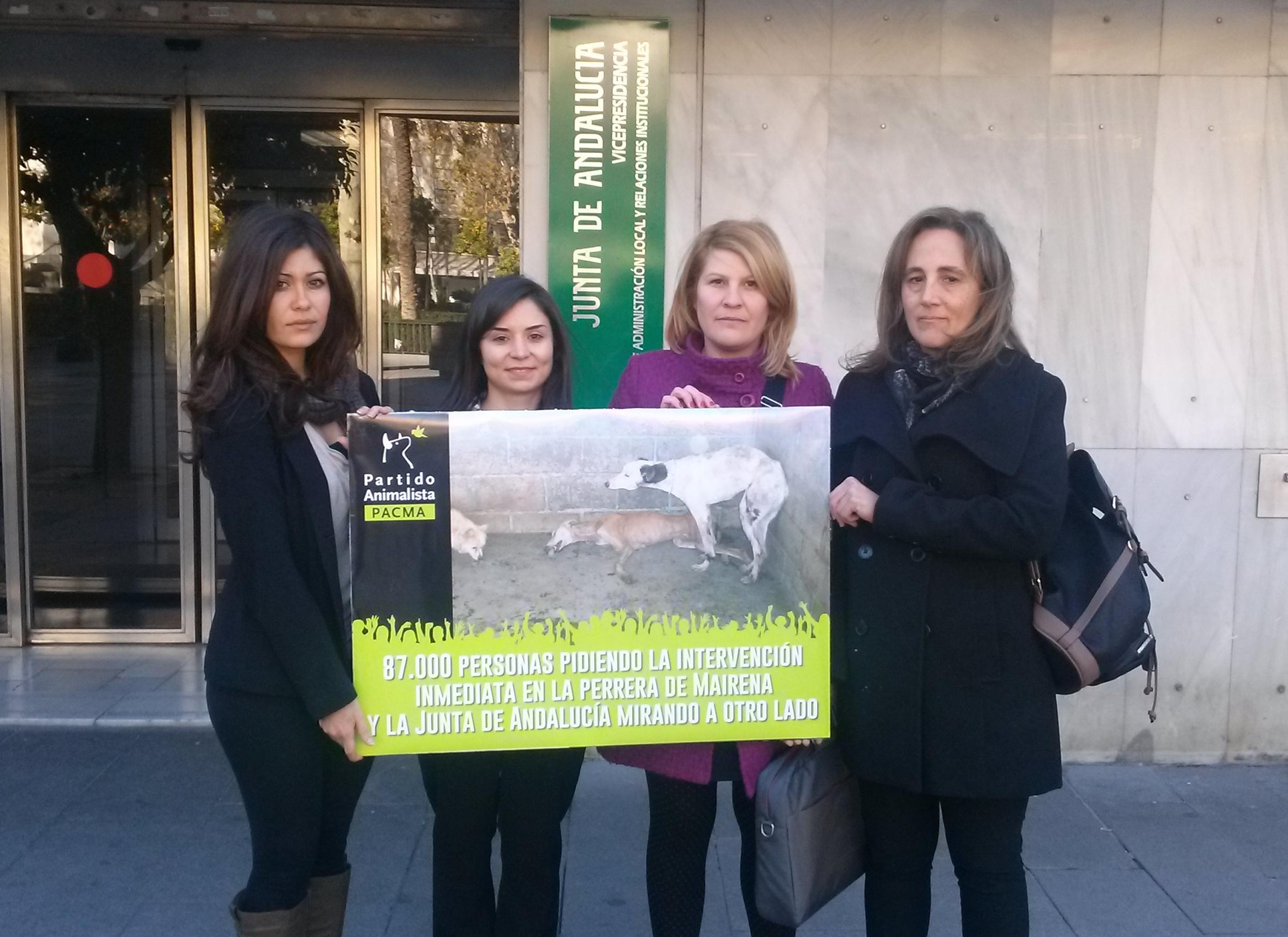 Nos reunimos con la junta de andaluc a para pedir su intervenci n en mairena partido - Pisos de la junta de andalucia ...