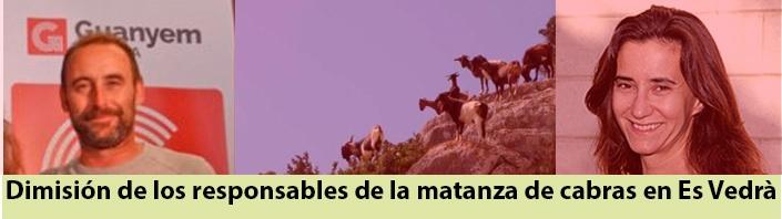 Matanza de cabras Es Vedrà