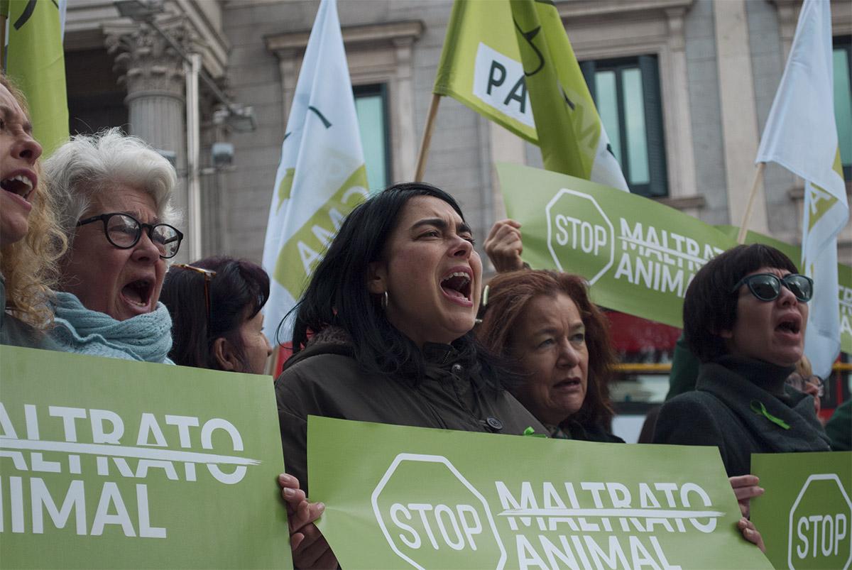 Los activistas gritan en el Congreso de los Diputados contra el Maltrato Animal
