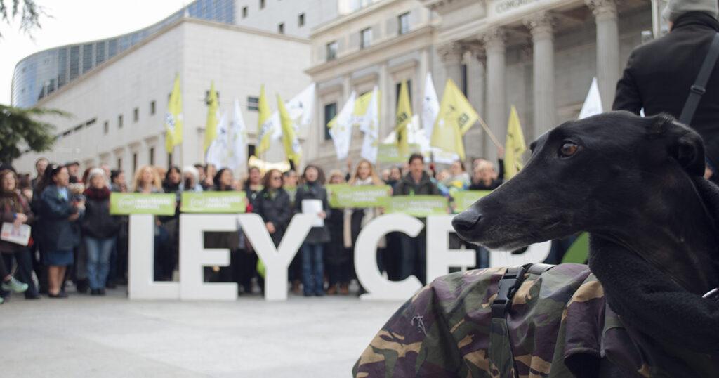 El Partido Animalista reunió a centenares de personas frente al Congreso para exigir una Ley de Protección Animal