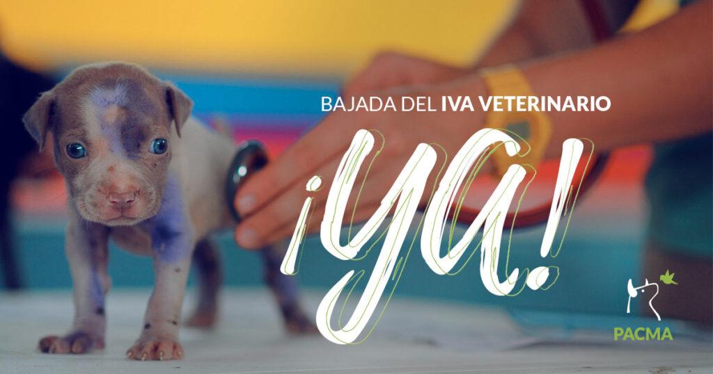 PCMA insta al Congreso a apotar la bajada del Iva veterinario