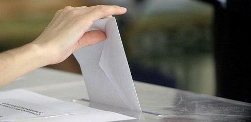 Qué hacer si no encuentras la papeleta de PACMA