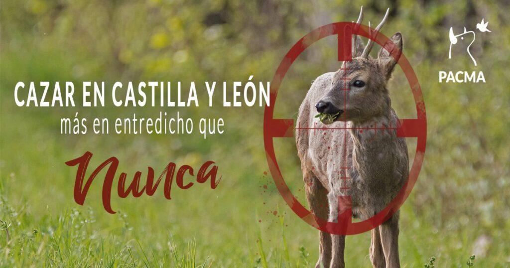 La caza en Castilla y León, más en entredicho que nunca