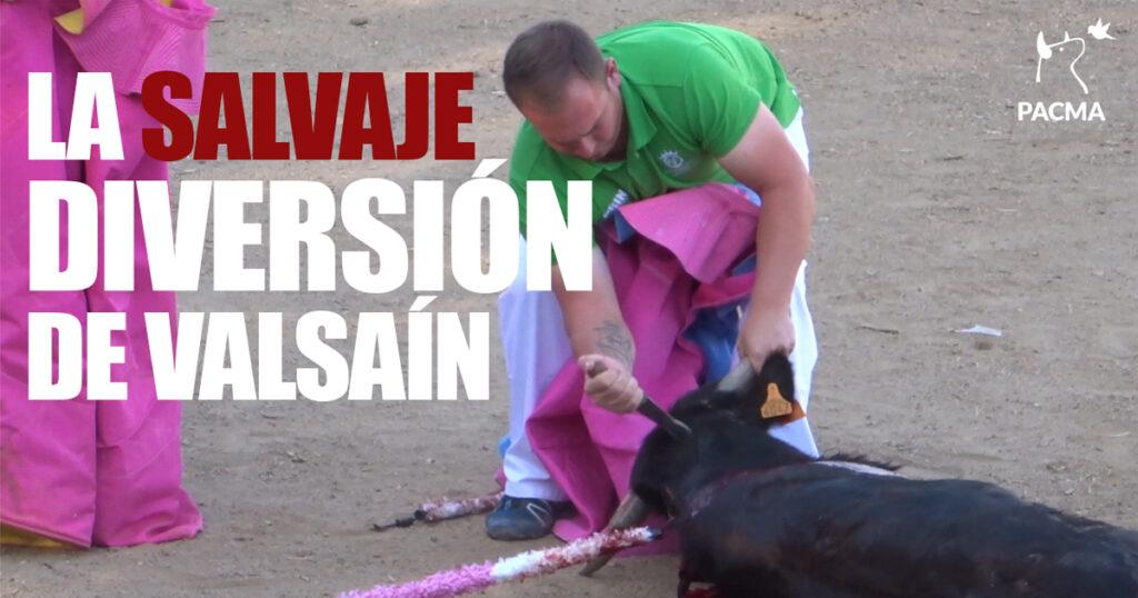 La salvaje diversión de Valsaín