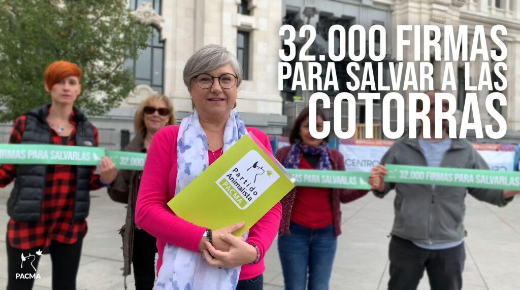 PACMA presenta 32.000 firmas al Ayuntamiento de Madrid contra la matanza de cotorras