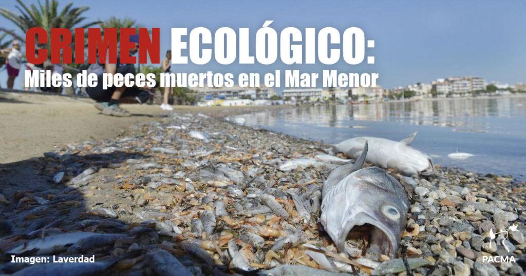 Crimen ecológico en el Mar Menor