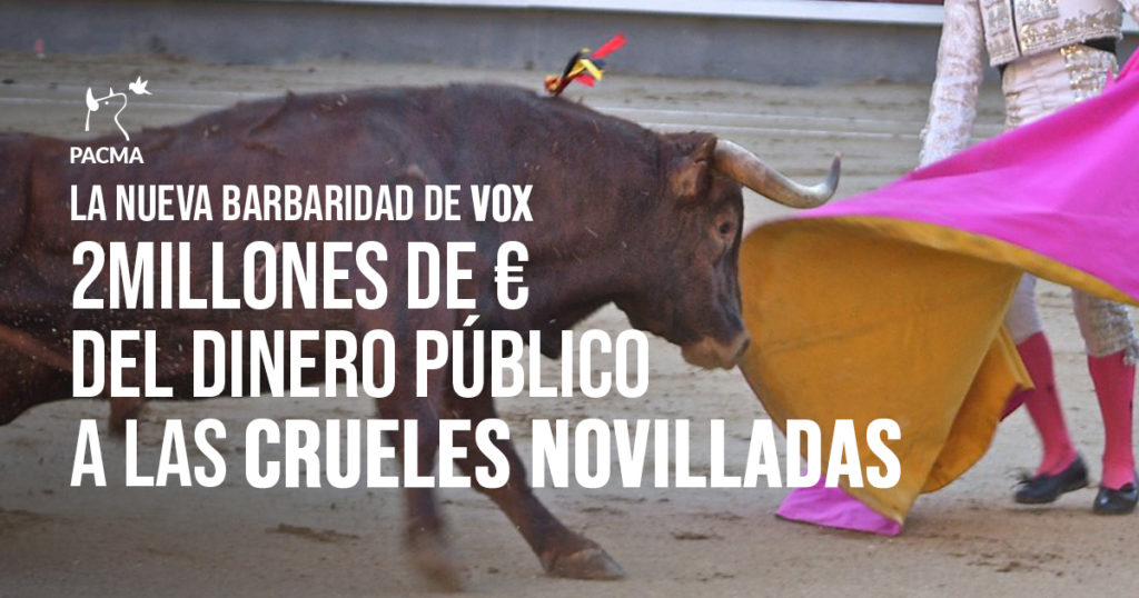 VOX pretende destinar 2 millones de euros a organizar novilladas en Andalucía