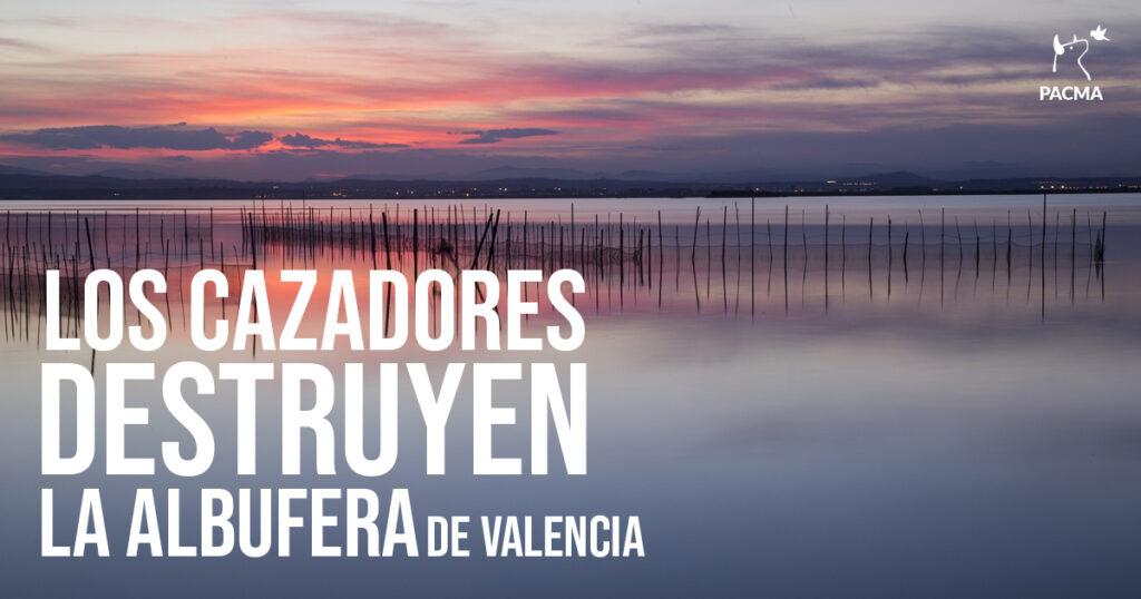 PACMA recoge 3000 cartuchos de caza en La Albufera valencian