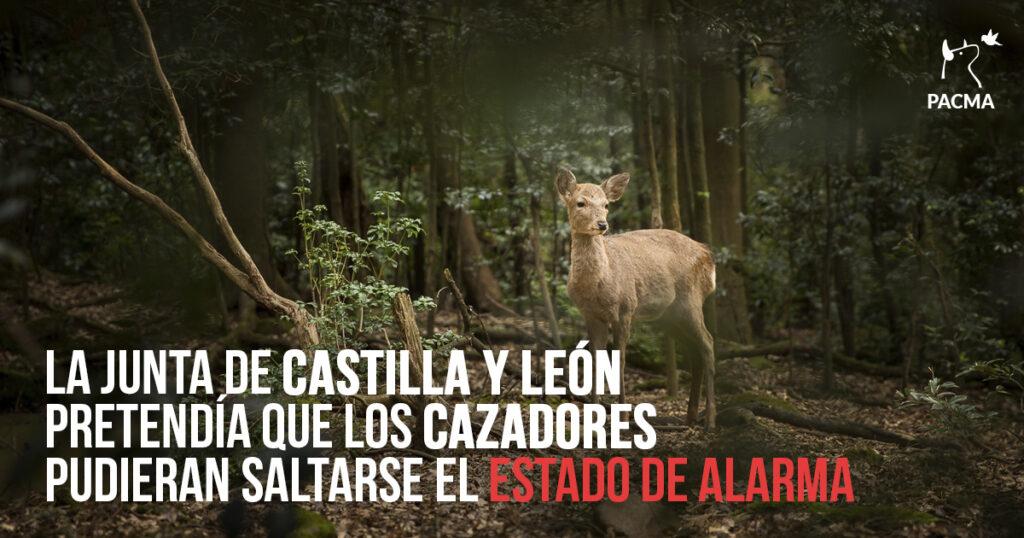 La Junta de Castilla y León pretendía que los cazadores pudieran saltarse el estado de alarma