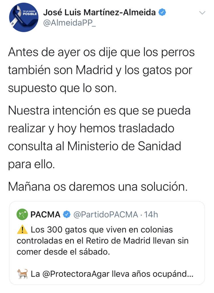 Almeida se compromete a ofrecer una solución para las colonias de gatos de El Retiro