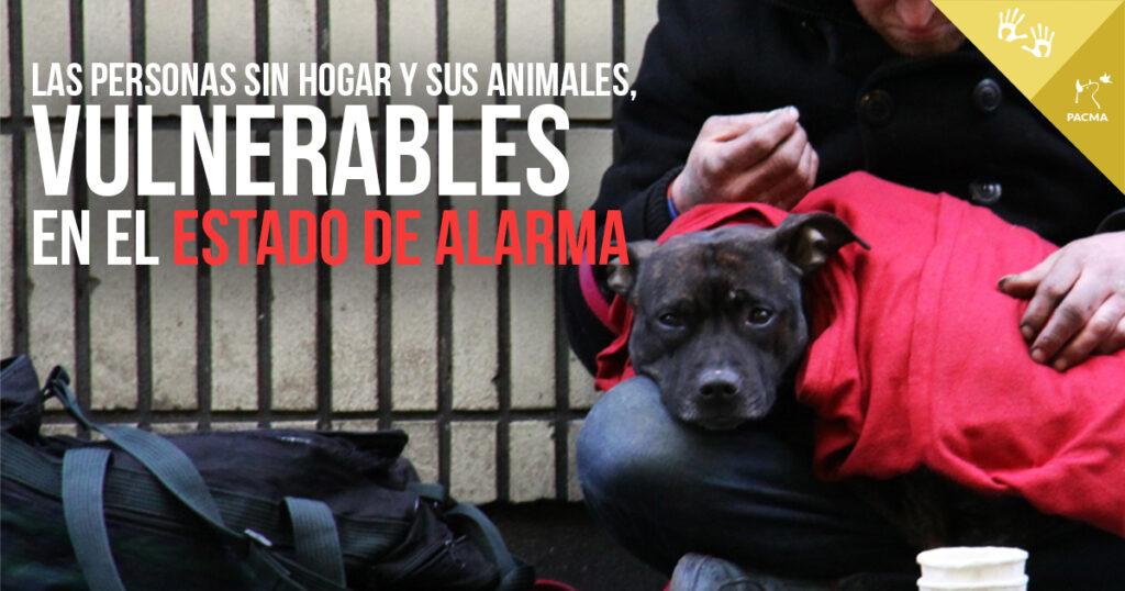 Las personas sin hogar y sus animales, las más vulnerables durante el estado de alarma