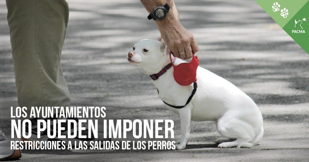 Los ayuntamientos no pueden imponer restricciones a las salidas de los perros a la calle
