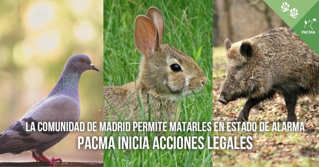 La Comunidad de Madrid permite la caza en estado de alarma