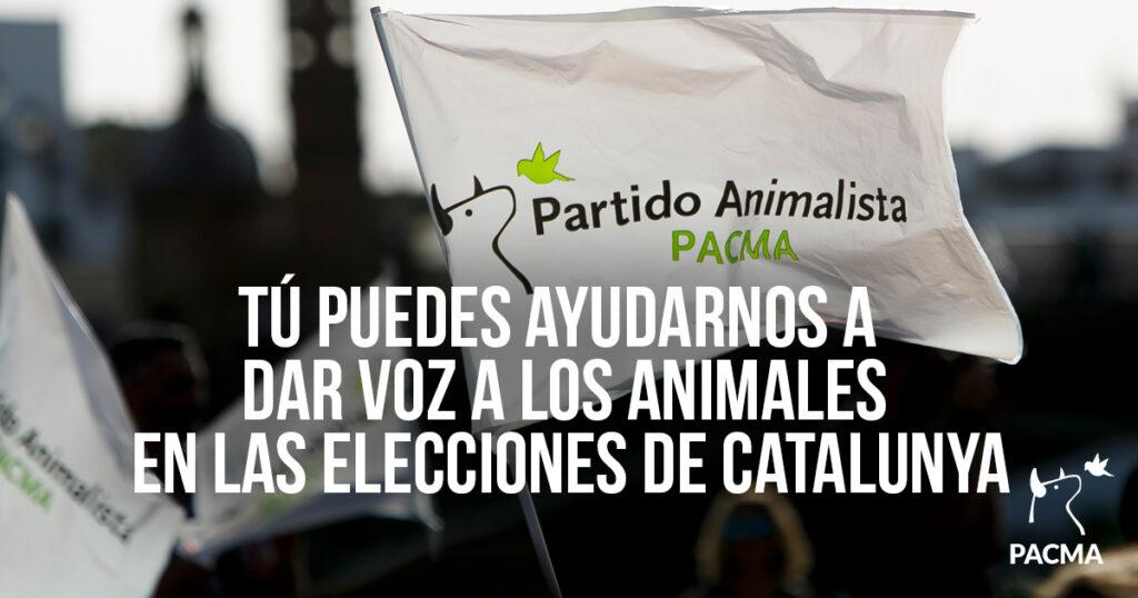 Tú puedes ayudarnos a dar voz a los animales en las elecciones de Catalunya